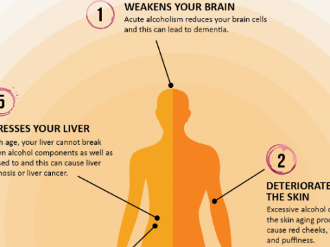 Impact of Alcohol on Aging